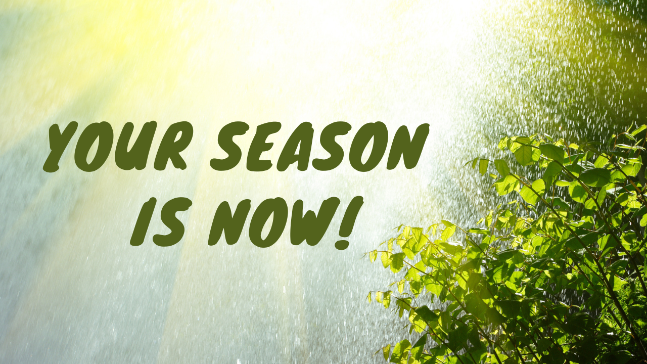 Prophet Climate Ministries Copy-of-season-is-now-email-banner This Friday ... You Are About To Enter Into A Season Of Supernatural Multiplication