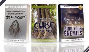 Prophet Climate Ministries 3-book-promo-300x175 3 book promo